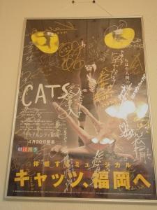 猫のプレゼント☆